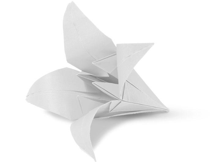 Origami-Lilie | Praxis für Gastroenterologie und Kardiologie Dr. Rösler und Dr. Lachmann in Bayreuth