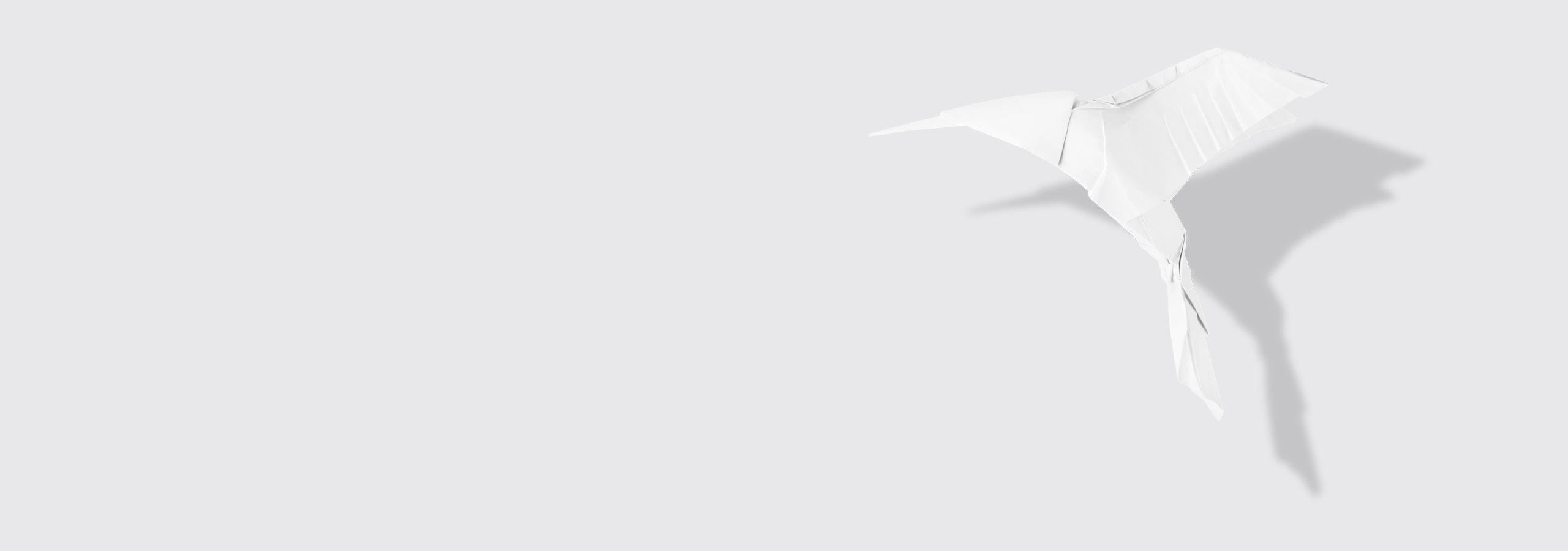 Origami-Kolibri | Praxis für Gastroenterologie und Kardiologie Dr. Rösler und Dr. Lachmann in Bayreuth